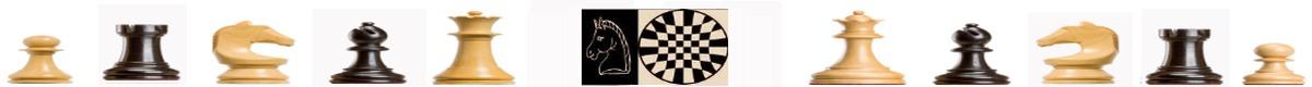 Šahovski klub Milan Majcen Sevnica